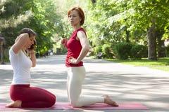 Gruppo di forma fisica che fa yoga nell'albero di posa del parco workout immagini stock