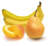 Gruppo di frutta. illustrazione di stock