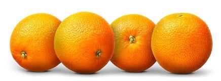 Gruppo di frutta arancio isolato su fondo bianco Fotografia Stock Libera da Diritti