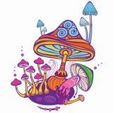Gruppo di funghi decorativi illustrazione vettoriale