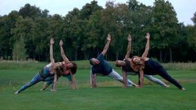 Gruppo di gente caucasica che fa yoga in parco video d archivio