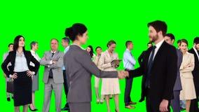 Gruppo di gente di affari di riunione video d archivio