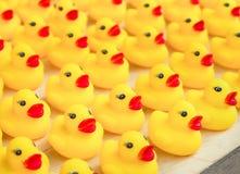 Gruppo di giocattolo giallo di gomma dell'anatra Fotografie Stock Libere da Diritti