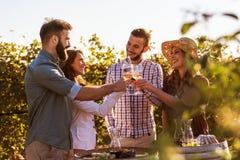 Gruppo di giovani che assaggiano vino in cantina vicino alla vigna immagine stock