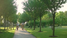 Gruppo di giovani ciclisti che guidano le biciclette in parco archivi video