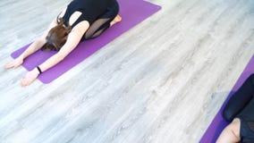 Gruppo di giovani donne che fanno yoga sulla stuoia Posa del ` s del bambino video d archivio
