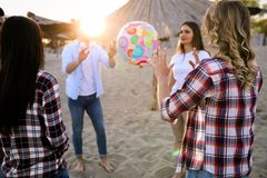 Gruppo di giovani felici divertendosi sulla spiaggia Immagini Stock