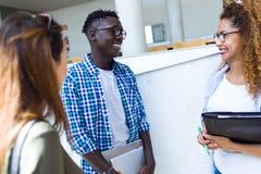 Gruppo di giovani studenti felici che parlano in un'università fotografia stock libera da diritti