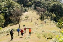Gruppo di immagine di alpinista che cammina sulla foresta profonda Fotografie Stock
