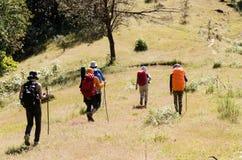 Gruppo di immagine di alpinista che cammina sulla foresta profonda Immagine Stock
