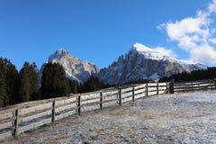 Gruppo di Langkofel nel Tirolo del sud L'Italia Immagine Stock