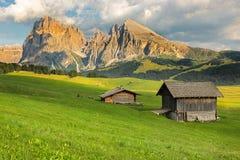Gruppo di Langkofel a Seiser Alm, Tirolo del sud, Italia Fotografie Stock Libere da Diritti