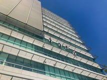 Gruppo di lavoratori che puliscono servizio di Windows su alta costruzione Fotografia Stock