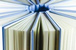Gruppo di libri blu Fotografie Stock Libere da Diritti