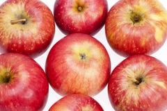 Gruppo di mele rosse isolate su fondo bianco Fotografia Stock Libera da Diritti