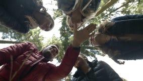 Gruppo di millennials nella foresta che dispone le loro mani in un cerchio che celebra successo e viaggio di affari motivazionale video d archivio