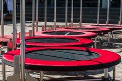 Gruppo di Mini Trampoline per attività di forma fisica Fotografia Stock Libera da Diritti