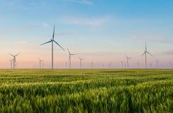 Gruppo di mulini a vento per produzione di energia elettrica nel campo di grano verde Immagine Stock Libera da Diritti