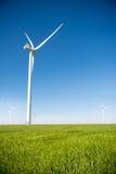 Gruppo di mulini a vento per produzione di energia elettrica nel campo di grano verde Immagine Stock