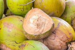 Gruppo di noci di cocco verdi Fotografie Stock Libere da Diritti