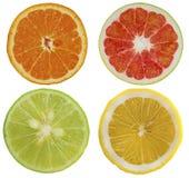 Gruppo di oggetto di frutti isolato su fondo bianco immagine stock