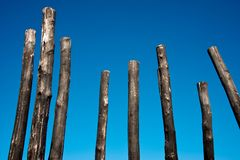 Gruppo di pali di legno carbonizzati immagini stock