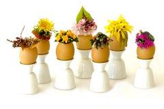 Gruppo di parata di Pasqua di uova con i cappelli Immagini Stock