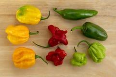 Gruppo di peperoncini habanero, vario colore sulla tavola di legno, frutti maturata e non maturata molto caldi messicani degli in fotografie stock libere da diritti