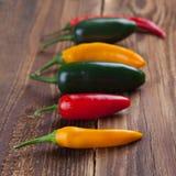 Gruppo di peperoncino rosso variopinto Immagine Stock