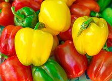 Gruppo di peperone dolce Immagini Stock Libere da Diritti