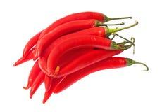 Gruppo di peperoni di peperoncini rossi roventi isolati su bianco Immagini Stock Libere da Diritti