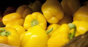 Gruppo di peperoni gialli Fotografia Stock