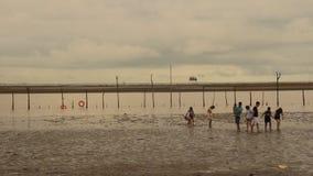 Gruppo di persone che camminano sulla spiaggia stock footage