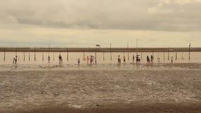 Gruppo di persone che camminano sulla spiaggia video d archivio