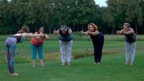 Gruppo di persone che esercitano yoga all'aperto video d archivio
