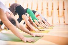 Gruppo di persone che fanno posa orientata verso il basso del cane di yoga sulle stuoie allo studio Immagini Stock