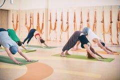 Gruppo di persone che fanno posa orientata verso il basso del cane di yoga sulle stuoie allo studio Immagini Stock Libere da Diritti