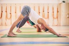 Gruppo di persone che fanno posa orientata verso il basso del cane di yoga sulle stuoie allo studio Immagine Stock