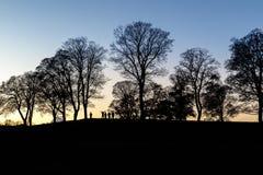 Gruppo di persone che godono del tramonto fotografie stock