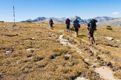 Gruppo di persone il prato di camminata delle montagne Immagini Stock