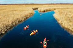Gruppo di persone in kajak fra le canne sul fiume di autunno fotografia stock libera da diritti