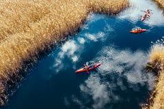 Gruppo di persone in kajak fra le canne sul fiume di autunno immagine stock