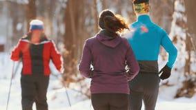 Gruppo di persone pareggiare e funzionamento nella foresta di inverno stock footage