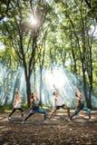 Gruppo di persone sportive che fanno gli esercizi in natura Fotografia Stock