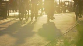 Gruppo di persone sulle biciclette che guidano nel parco fondo, attività sportiva di svago di sport attivo di stile di vita Sano archivi video