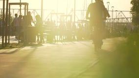 Gruppo di persone sulle biciclette che guidano nel parco fondo, attività sportiva di svago di sport attivo di stile di vita Sano stock footage