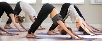 Gruppo di persone yoga di pratica, posa orientata verso il basso del cane immagini stock