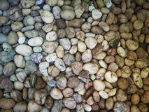 Gruppo di piccole pietre Fotografie Stock