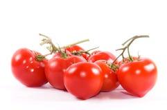 Gruppo di pomodori Fotografia Stock