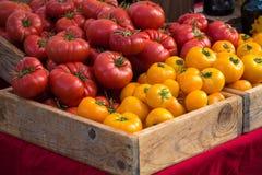 Gruppo di pomodori rossi e gialli ad un mercato del ` s dell'agricoltore Immagine Stock Libera da Diritti